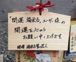 玉崎神社絵馬