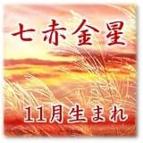 七赤金星 11月生まれ-