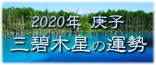 三碧木星 2020年の運勢