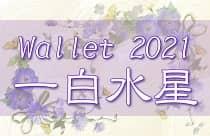 一白水星 2021年 日用アイテムと財布